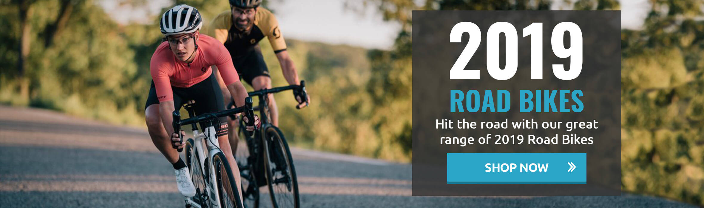 2019 Road Bikes