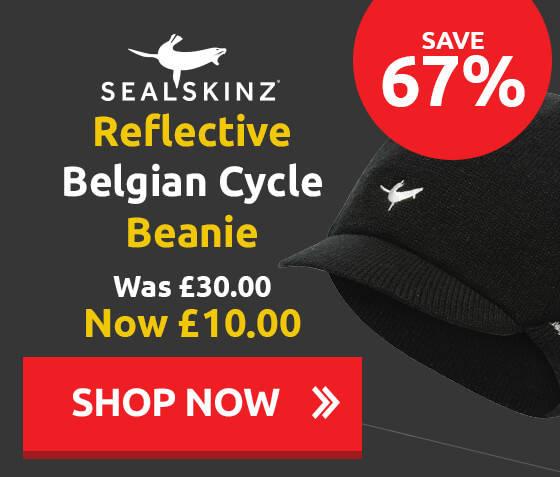 Sealskins Reflective Belgian Beanie